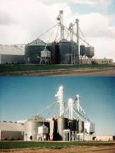 Grain Leg Painting Photos